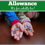 Allowance: It's For Adults Too!