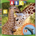 Animal Atlas Animal 123's and Animal ABC'S Giveaway