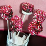 chocolate covered marshmallow lolliop