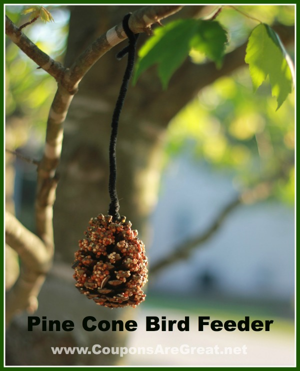 Craft Project Idea: Pinecone Bird Feeder