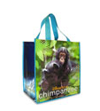 Disney Store Earth Day Freebie: Free Reusable Tote Bag