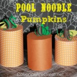 Pumpkin Craft: Pool Noodle Pumpkin