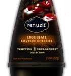Renuzit Tempting Indulgences Air Freshener Cones Coupon