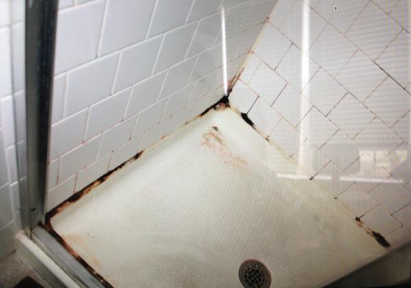 gross shower 2