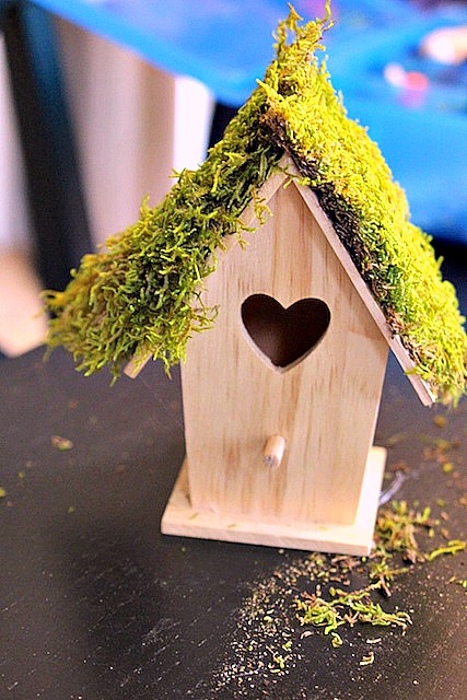 fairy house with peat moss