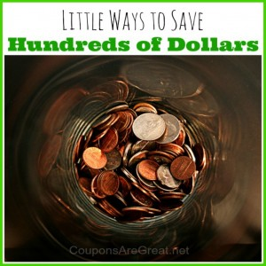 little ways to save hundreds of dollars