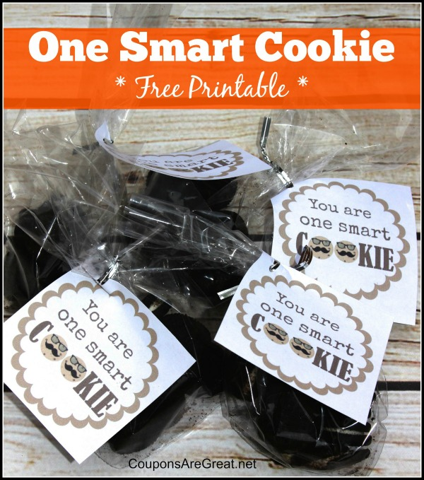 This One Smart Cookie printable tag is a great way to turn any bag of cookies into a super cute treat!