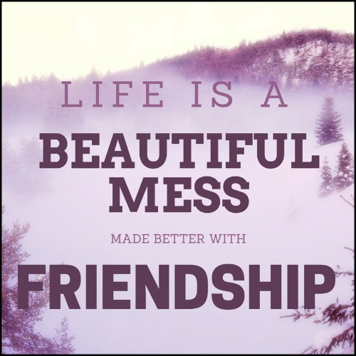 Friendship quote - Life is a beautiful mess made better with friendship