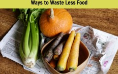 Ways to Waste Less Food