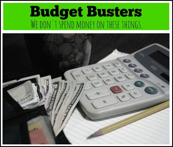 Budget busters come in many forms - edible, tangible, and more. Here is a list of areas you can skip in your budget to save money