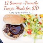 Plan Ahead to Save Time and Money – 12 Summer Friendly Freezer Meals
