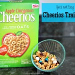 Quick and Easy Apple Cinnamon Cheerios Trail Mix