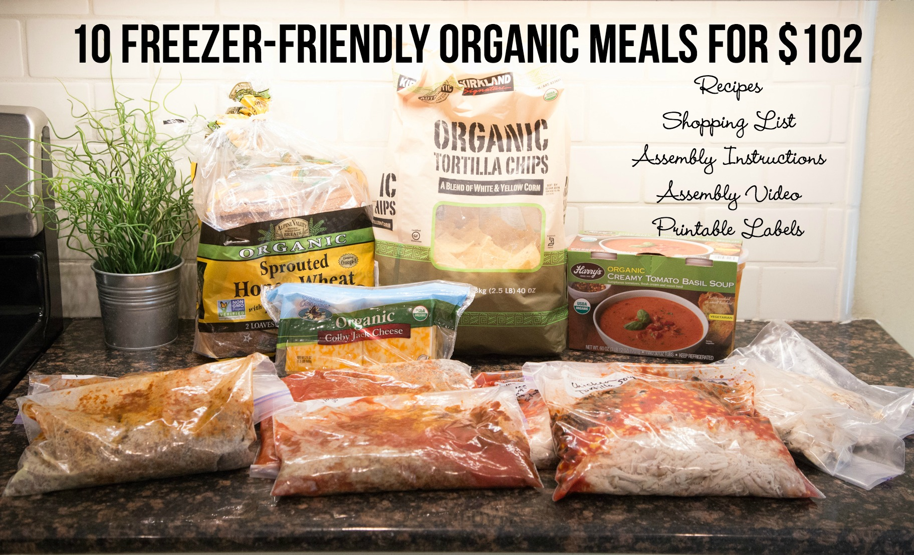 planning made easy with 10 freezer friendly organic meals
