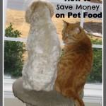 5 Ways to Save Money on Pet Food