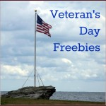 Veteran's Day Freebies for America's Military (Present and Past)